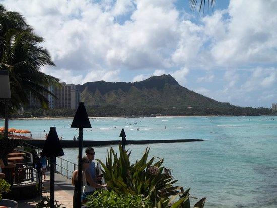 Sheraton Waikiki:                   Diamond Head from the Pool. Stunning!