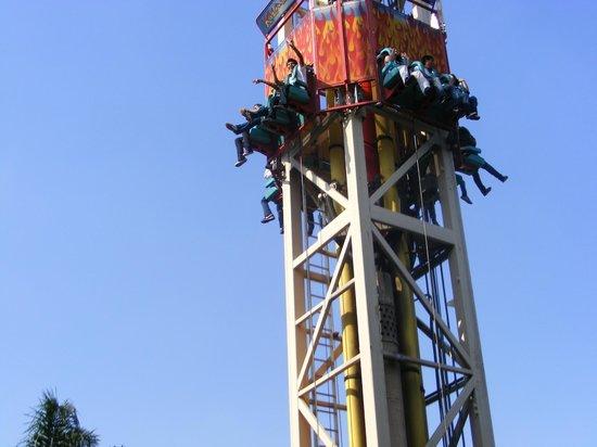 Foto De Six Flags Mexico Ciudad De Mexico Animales Inteligentes