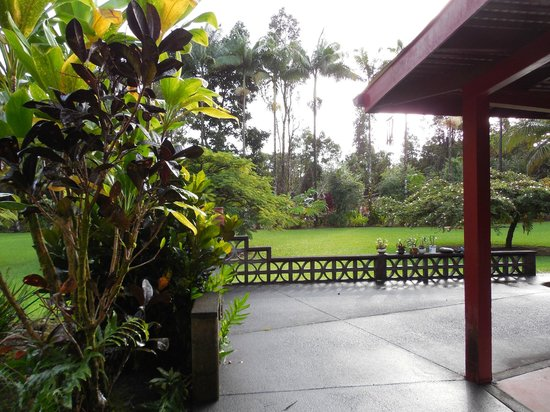 Hale Moana Bed & Breakfast: Pictures from the grounds