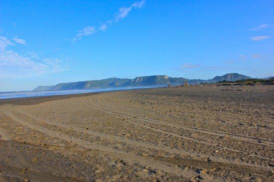Te Araroa Holiday Park: Beach