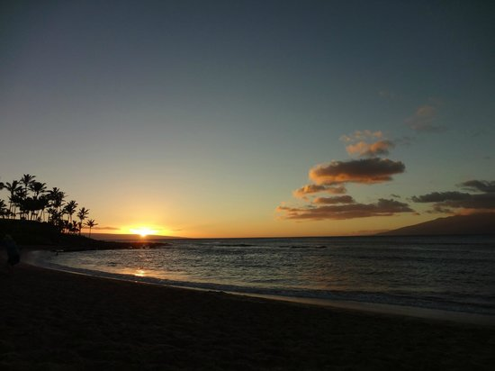 The Napili Bay:                   Beach sunset