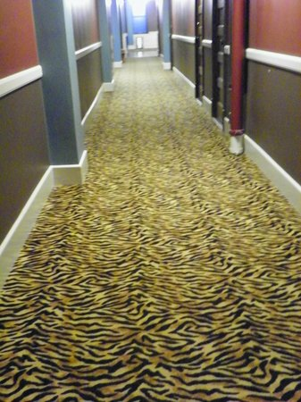 Moore Hotel:                   even the hallways were cool