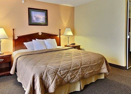 Quality Inn & Suites Niles: Guest Room