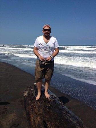 Cabinas El Icaco Tortuguero:                   la playa que esta frente al hotel es maravillosa