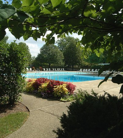 Inn Walden: Pool View