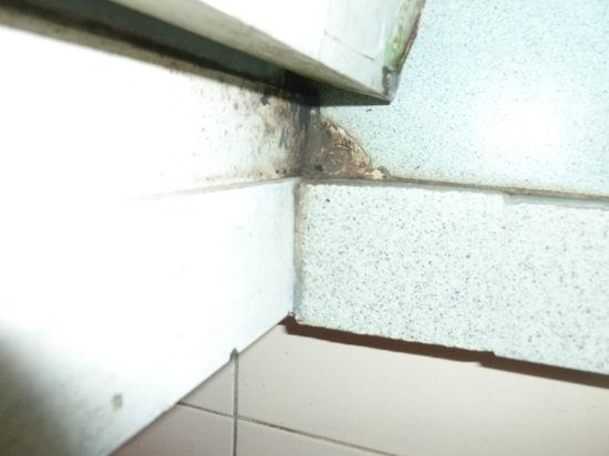SP Guesthouse & Tour:                   Not cleaned