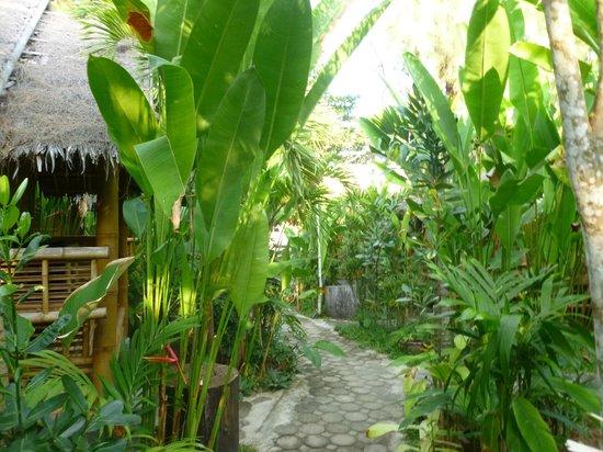Ruan Mai Naiyang Beach: Gorgeous gardens!