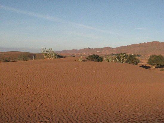 VClub Agadir: escursione