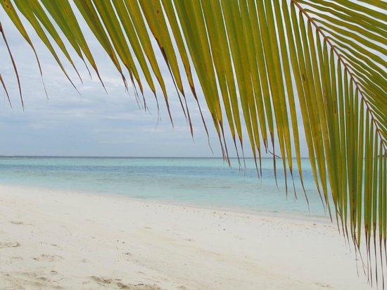 Kihaad Maldives: la spiaggia.....