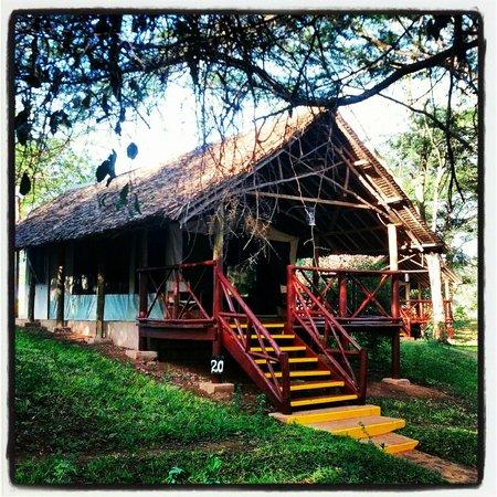 Voyager Ziwani, Tsavo West:                   Unser Zelt...