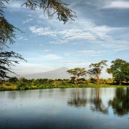 Voyager Ziwani Camp:                   Herrlicher Ausblick auf den Kilimanjaro...