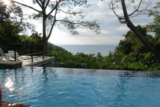 Makanda by the Sea:                   view from the pool