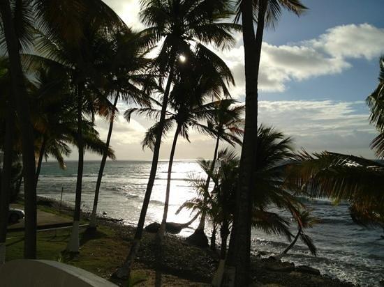 Caribe Playa Beach Hotel:                   el amanecer!