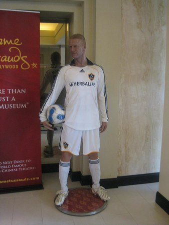 Sheraton Universal Hotel:                   Beckham in reception....
