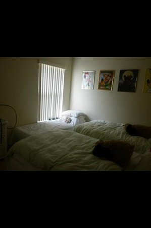 Silver Villas:                   Twin bedroom-camp bed near window-three kids