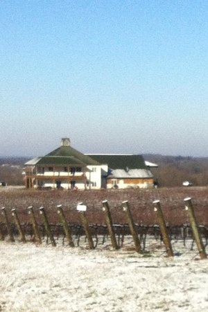 RayLen Vineyards:                   Oh, and it snowed.
