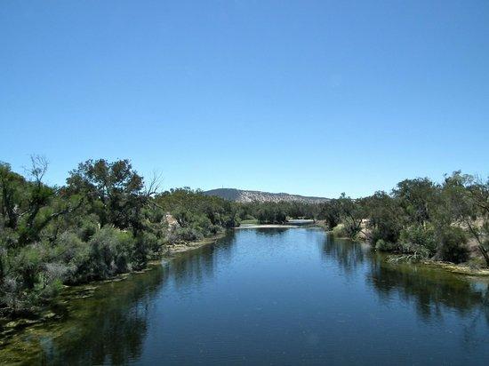 Avon River Suspension Bridge: View down the river from the suspension bridge