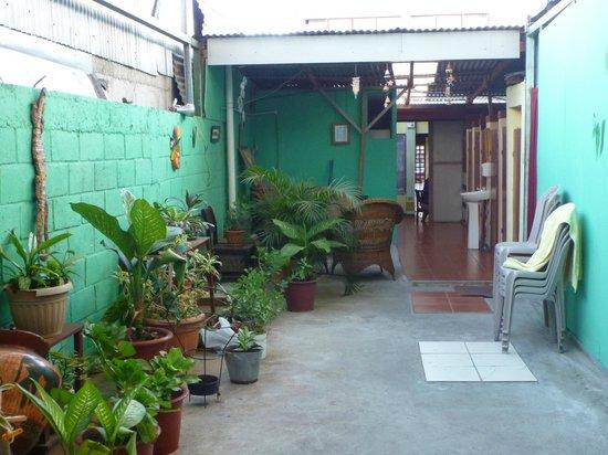 Hostel Trotamundos : courtyard