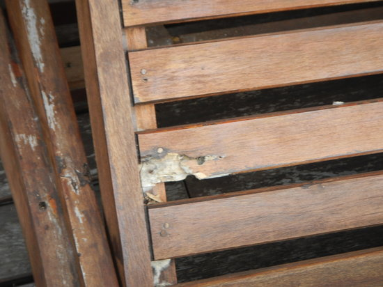 AKA Resort & Spa:                   Mould growing on outdoor furniture. Never cleaned,