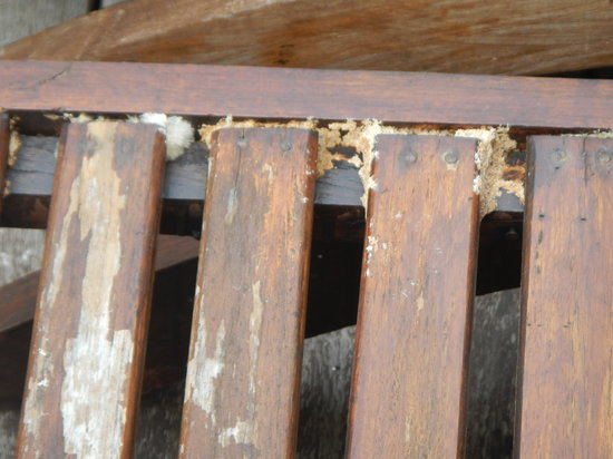 AKA Resort & Spa:                   Mould on outdoor furniture 2