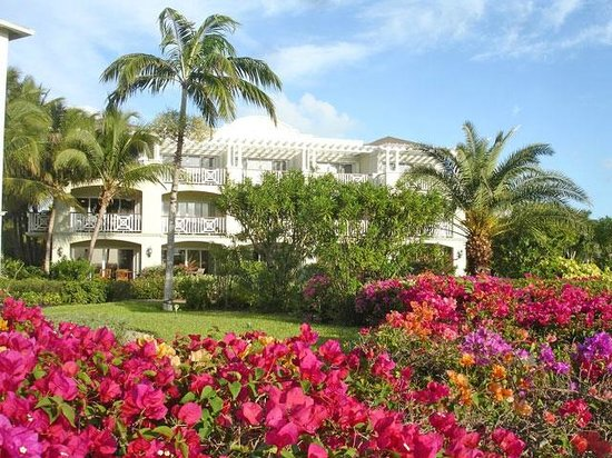 Royal West Indies Resort:                   Beautiful Grouns