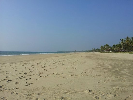 The Palm Beach Resort:                                     White sand...