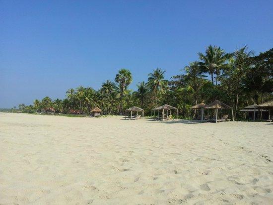 The Palm Beach Resort:                                     Endless beach