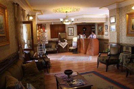 Tashkonak Hotel: Lobby
