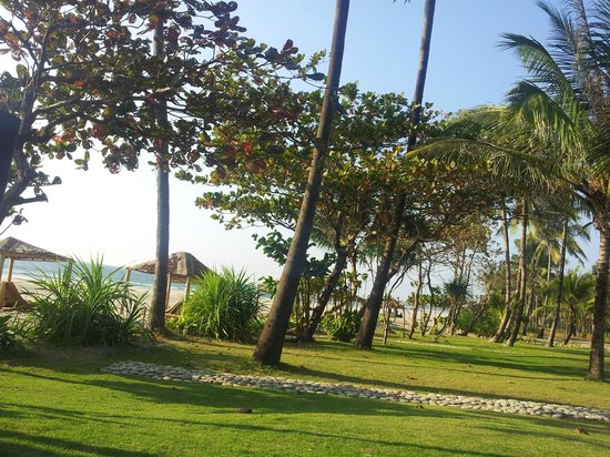 The Palm Beach Resort:                                     The front garden is a perfect play area for kids