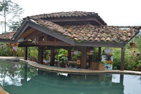 Hotel Mountain Paradise: Pool area