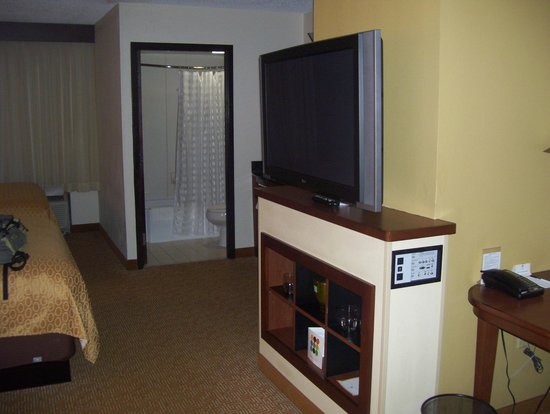 Hyatt Place Tampa Airport/Westshore: big LCD TV