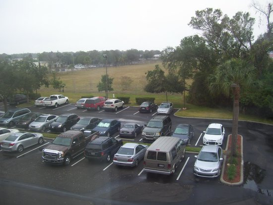 Hyatt Place Tampa Airport/Westshore: view