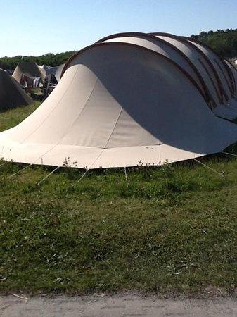 Camping Stortemelk:                                     meest voorkomende tent