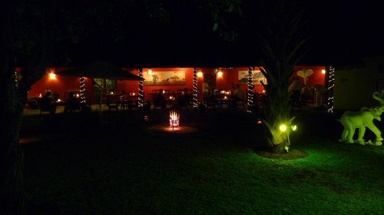 Sefapane Lodge and Safaris :                   Dinner in romantic setting