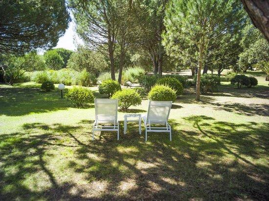 Les Pins de Santa Giulia : Le Parc