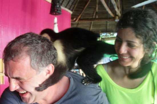 Monkeying around at Urraca Private Island, Loved it!