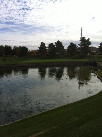 The Raven Golf Club at South Mountain : very nice finishing hole