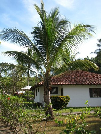 Hotel Villas Playa Samara:                                     Our villa