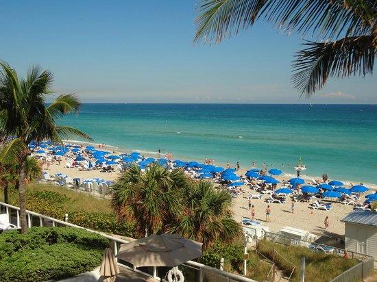 Trump International Beach Resort Reviews