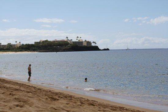 Kahekili Beach:                   The Black Rock. Great snorkeling location.