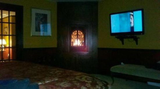 Moon Shadow Bed and Breakfast :                   Fireplace and flat screen