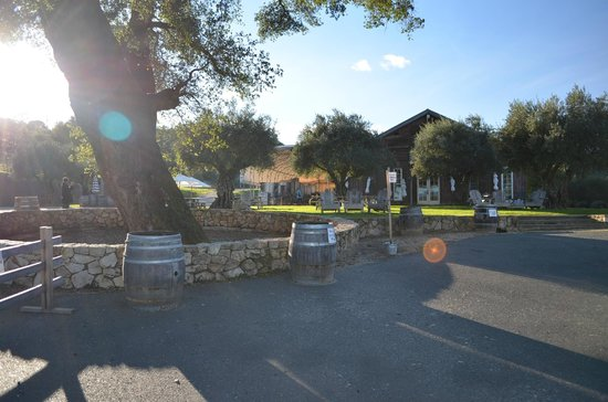Bella Vineyards and Wine Caves:                   Bella parking lot