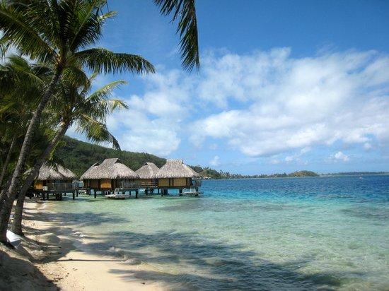 Maitai Polynesia Bora Bora: qq bungalows