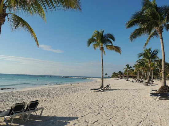 Barcelo Montelimar Beach:                   la playa