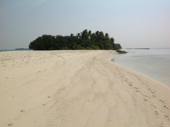 Kuramathi Island Resort:                   where is everyone ?