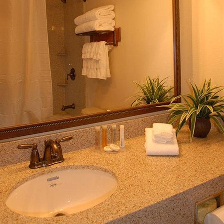 Brookstone Lodge : Other Hotel Services/Amenities