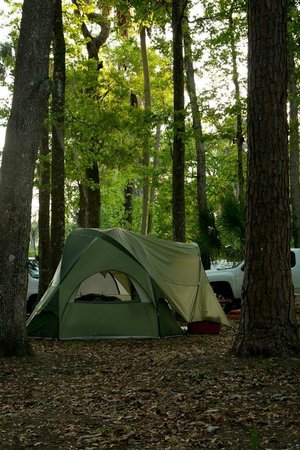 Nova Family Campground: Tent Camping