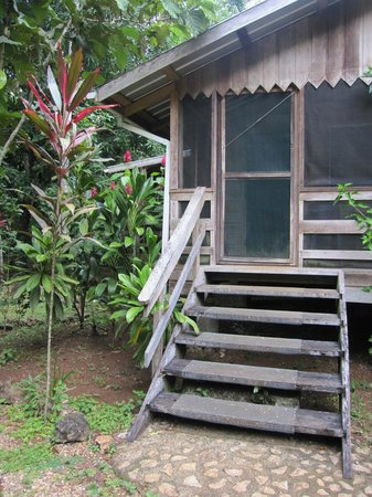Moonracer Farm Lodging & Tours:                   Cabin with screened porch