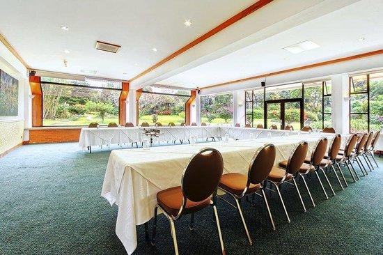 Hotel Bougainvillea: Bromelias conference room