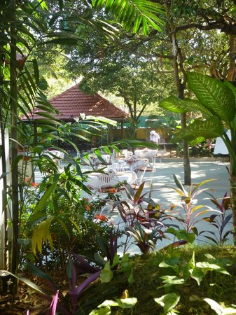 คาซาอันจูนา:                   Garden